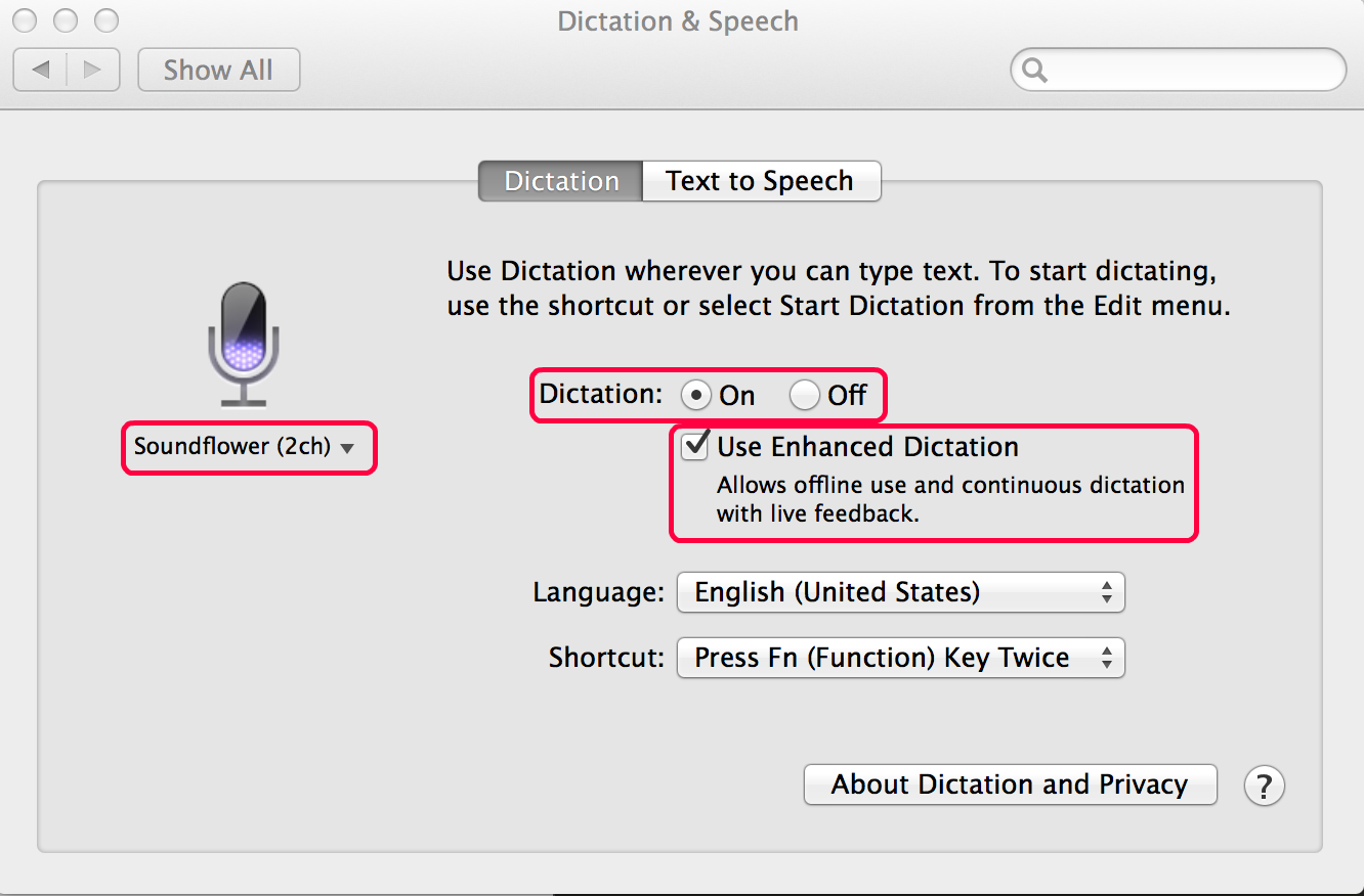 Dictation speech to text settings]